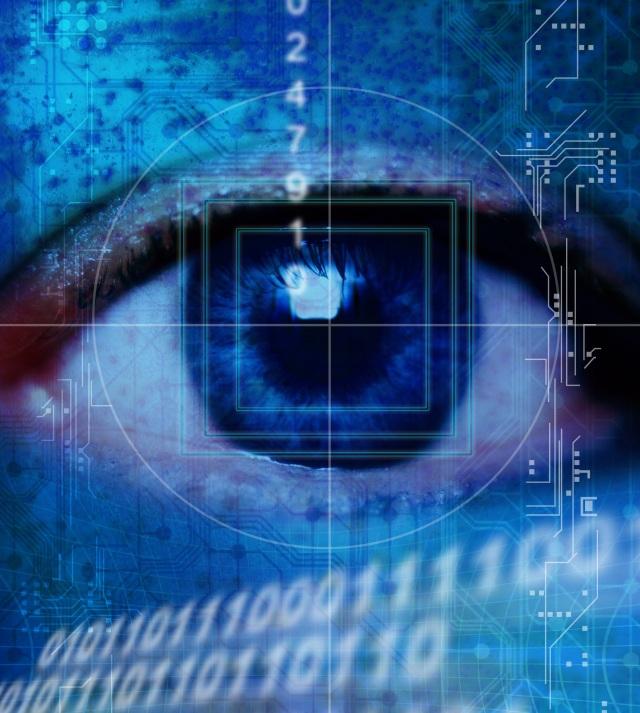 surveillance-cyber-crime
